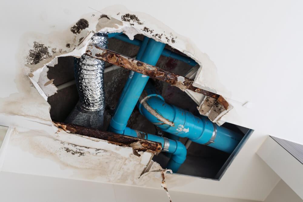 degat des eaux sur wc toilette